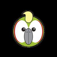Link to animaru Amazon Parrot
