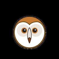 Link to animaru Barn Owl