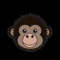 Link to animaru Bonobo