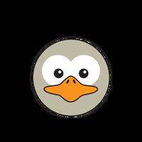 Link to animaru Ostrich