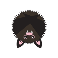 Link to animaru Vampire Bat