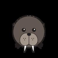 Link to animaru Walrus