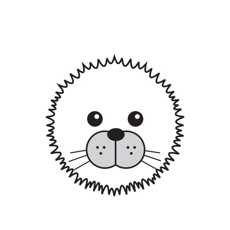 animaru Arctic Seal