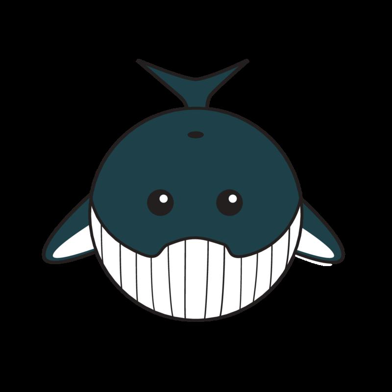 animaru Humpback Whale