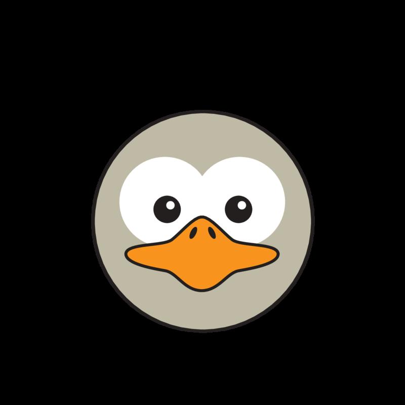 animaru Ostrich
