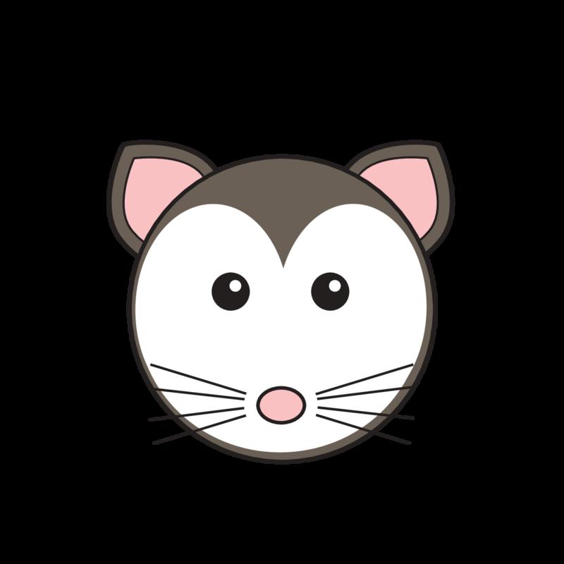 animaru Possum